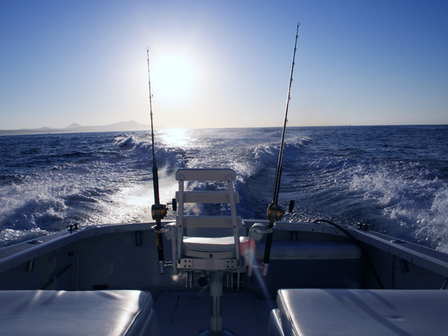 Things to do in cabo fishing itravel cabo for Los angeles fishing charters